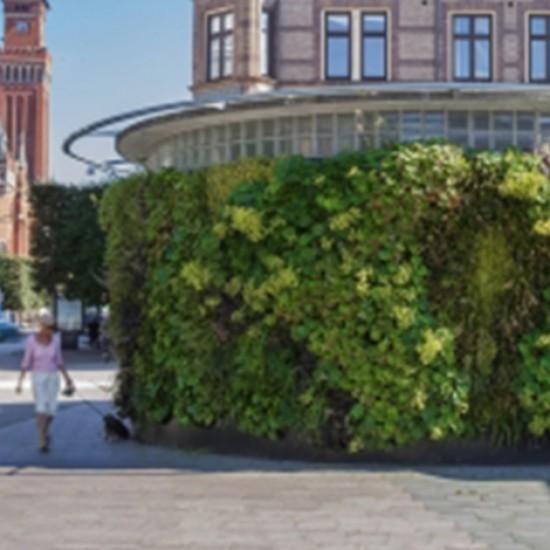 Yeşil Duvar Sistemi